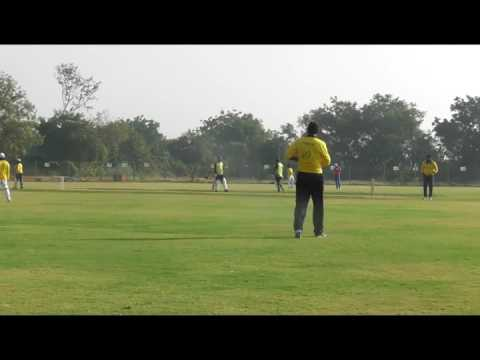 Honey Badgers Vs Cricket Buddies