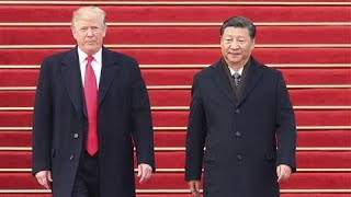 Trade Face-Off: What Trump and Xi Want From Their G-20 Talks