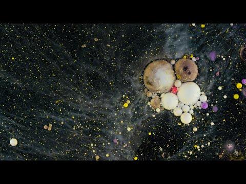 """Makro-Kurzfilm """"Galaxy"""" von Martin Baumann"""