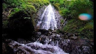 Hamama Falls Hike, Kahaluu, Hawaii (GoPro Session)