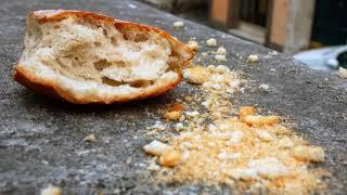 Почему крошится хлеб?
