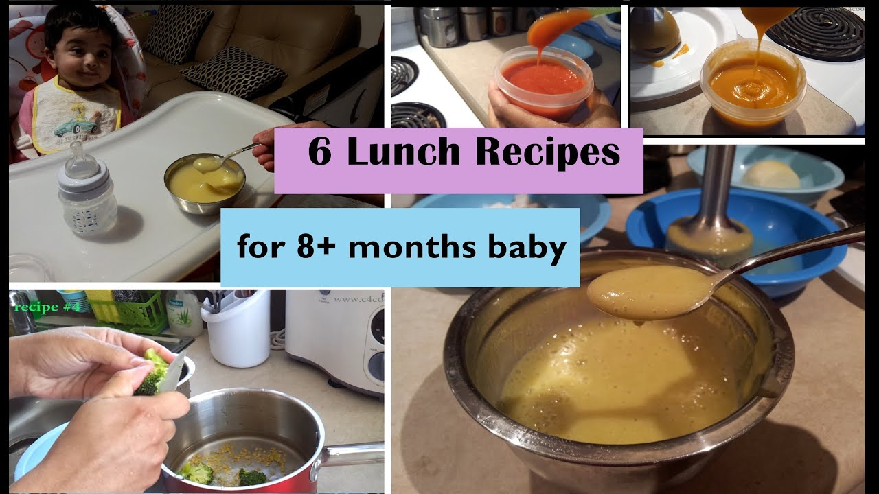 6 lunch recipes for 8 months baby stage 3 homemade baby food 6 lunch recipes for 8 months baby stage 3 homemade baby food recipes 8 months babyfoodrecipes youtube forumfinder