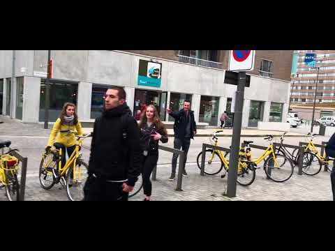 Antwerpen, NHTV UD jaar 2 2018