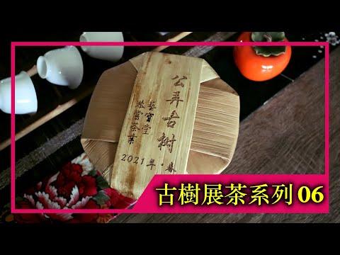 《古樹展茶系列》EP.06|2021年公弄大寨古樹純料(4K UHD)【藝寶堂台灣張哥】