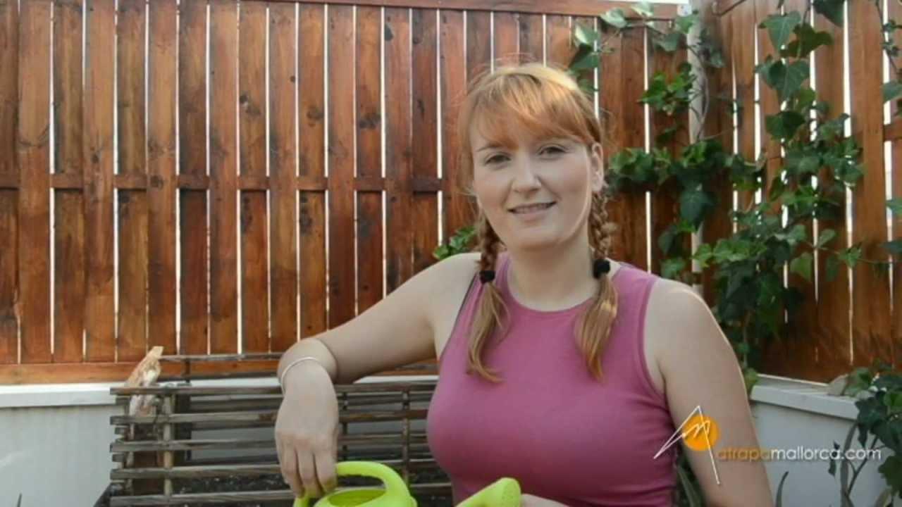 El huerto en casa 9 youtube - El huerto en casa ...