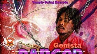 Genista - Danger Circle - August 2018