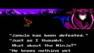 Ninja Gaiden II - The Dark Sword of Chaos - Ninja Gaiden II (NES) - Vizzed.com - Intro - User video