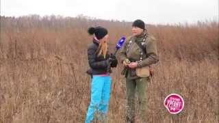 """""""Острый репортаж"""" с Аллой Михеевой - Соколиная охота"""