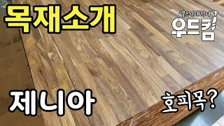 [우드킴목재] 제니아 목재 소개 호피목? /집성목종류 …