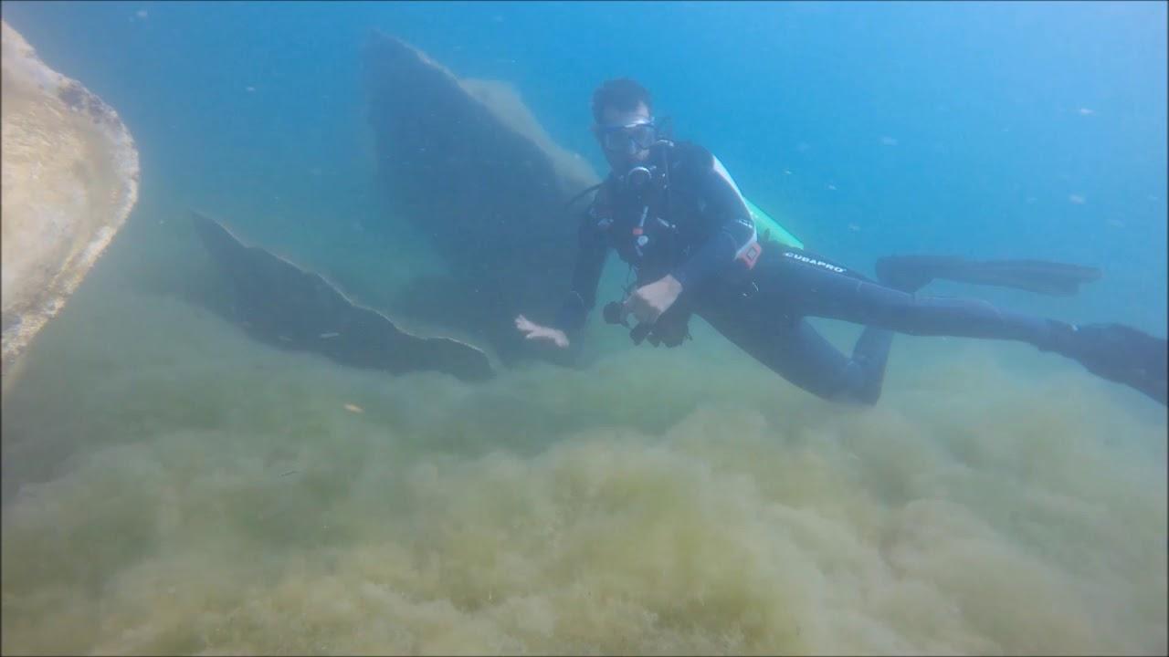 نتيجة بحث الصور عن متحف تحت الماء في الدمام