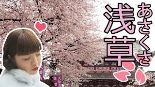 [如有天櫻花再開♪] 新手上路:樂善的淺草賞櫻行程推薦 thumbnail