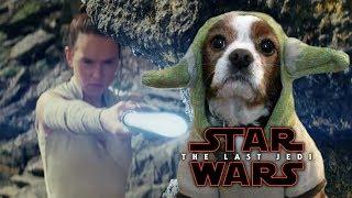Star Wars: The Last Jedi Trailer - Yoda Dog's Reaction