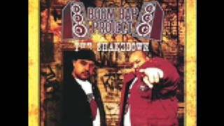 boom bap project-never again (mistakes)