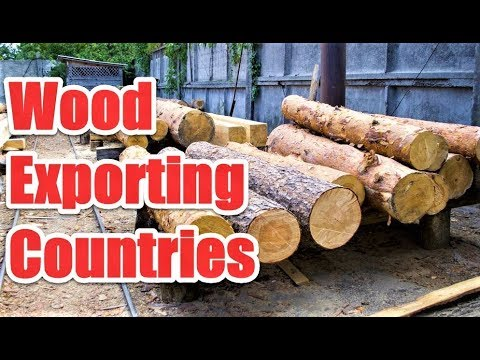 Top 9 Wood Exporting Countries In The World
