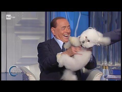 Silvio Berlusconi, il barboncino e la poesia di Madre Teresa - Porta a Porta 21/06/2017