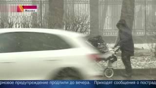 В Москве штормовое предупреждение продлили до вечера