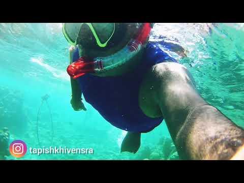 Red Sea Coral Snorkeling In Eilat, Israel