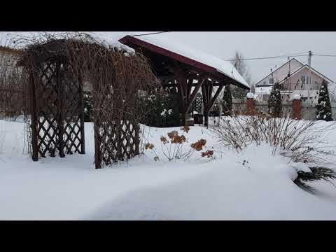 Обзор сада в ФЕВРАЛЕ: снежная зима 2021.