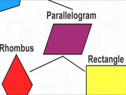 Know Your Quadrilaterals