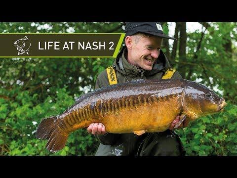 LIFE @ NASH 2 - CARP FISHING BEHIND THE SCENES!