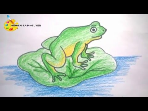 Vẽ con ếch/How to Draw Frog