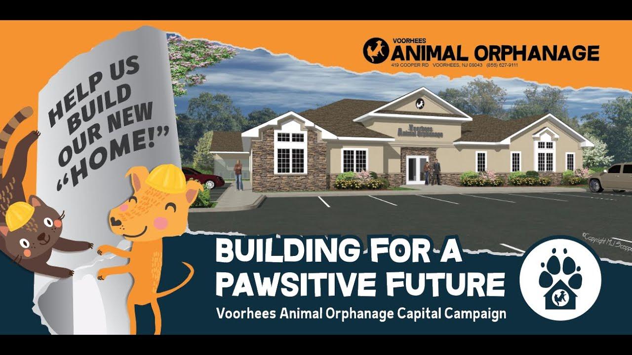 Voorhees Animal Orphanage | Home