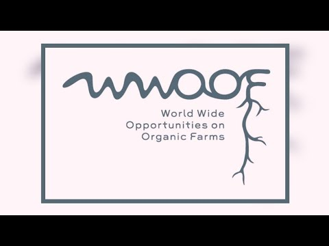 My first WWOOF -  Farming & Volunteering in Central America | Bamboo Farm | Auroras Eye Films