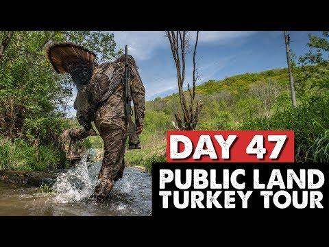 WISCONSIN PUBLIC LAND GOBBLERS! - Public Land Turkey Tour Day 47