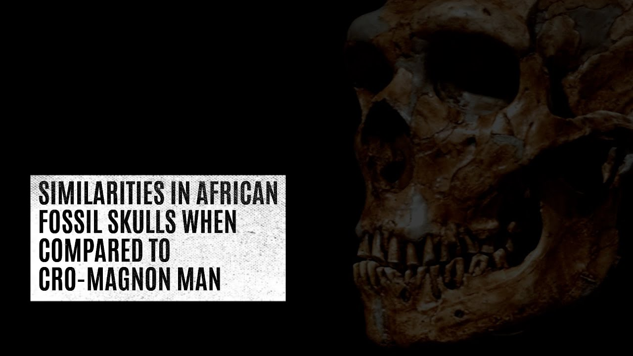Similarities in African fossil skulls when compared to Cro-Magnon Man
