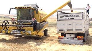 BİÇER Döver Ve MURAT KOÇER Buğday HASADI çalışmaları VE İŞ MAKİNELERİ KEREM USTA