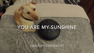 You Are My Sunshine by Johnny Cash - Steel Tongue Drum