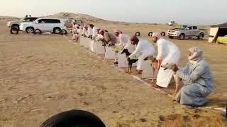 سباق كلاب سلوقية في جعلان بسلطنة عمان