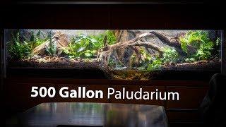 i-built-a-500-gallon-paludarium-at-pondemonium