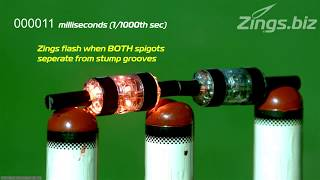 Zings Flashing Cricket Bails