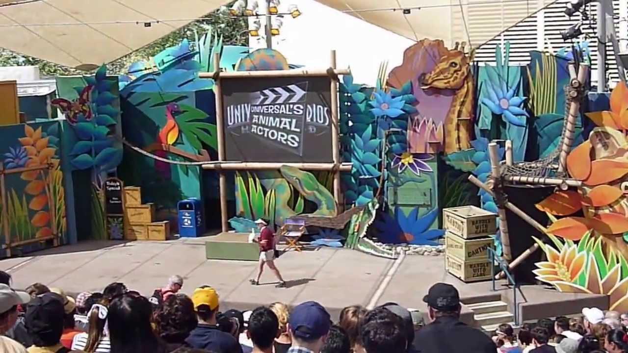 Universal Studios Hollywood In Burbank Ca Animal Actors