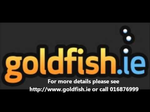 Dublin South FM's Business Eye show interview Gordon O'Neill of Goldfish.ie