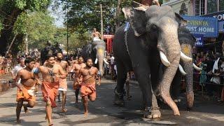Guruvayoor Elephant Race  Anayottam (ഗുരുവായൂർ ആനയോട്ടം)  2016 HD