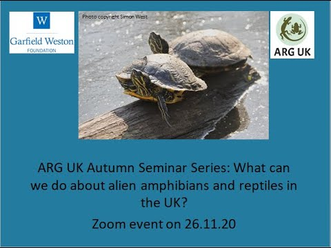 ARG UK Autumn Seminar Series: What can we do about alien amphibians and reptiles in the UK?