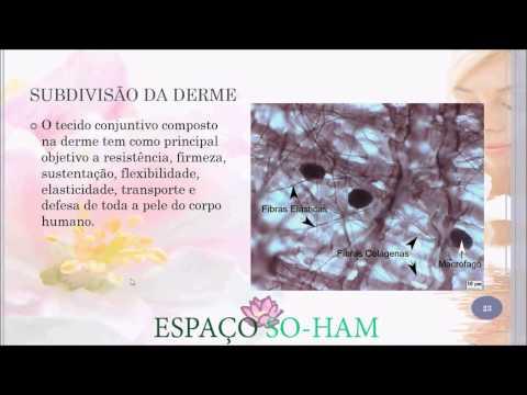 Vídeo Curso de esteticista