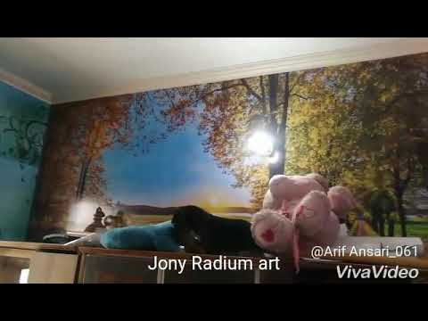 3d Home wallpaper 4 jony radium art kashipur