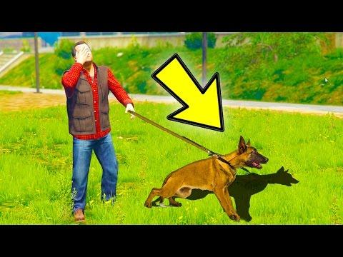 GTA 5 - HOW TO FIND MICHAEL'S SECRET FAMILY DOG! (GTA 5 Easter Eggs & Secrets)