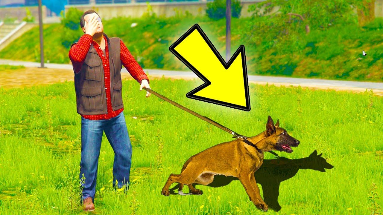 Gta  How To Find Michaels Secret Family Dog Gta  Easter Eggs Secrets Youtube