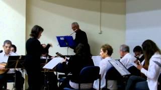 """תזמורת """"מצלול"""" מושקובסקי; חלילן דניאל לשם"""
