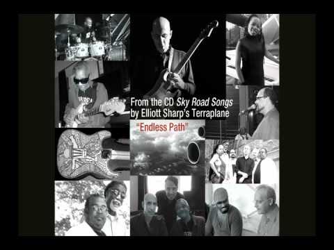 "Elliott Sharp's Terraplane: ""Sky Road Songs"" - Endless Path"