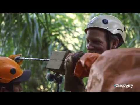 Горная тарзанка | В поисках сокровищ: змеиный остров | Discovery Channel