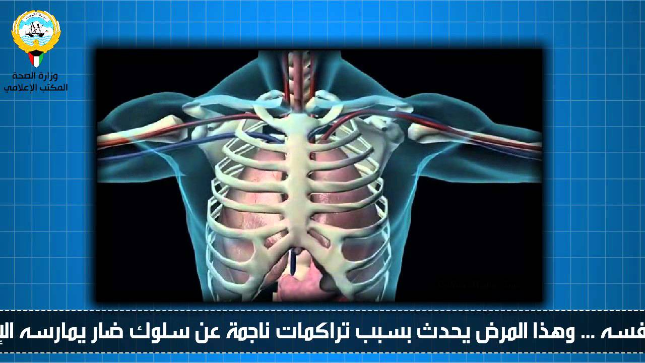 اليوم العالمي للقلب / وزارة الصحــــــــة / المكتب ...