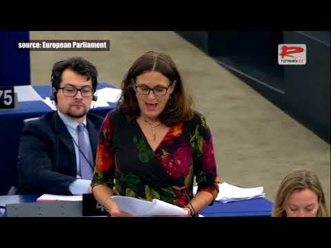 European Parliament: Roma in the EU face antigypsyism and everyday discrimination that must stop