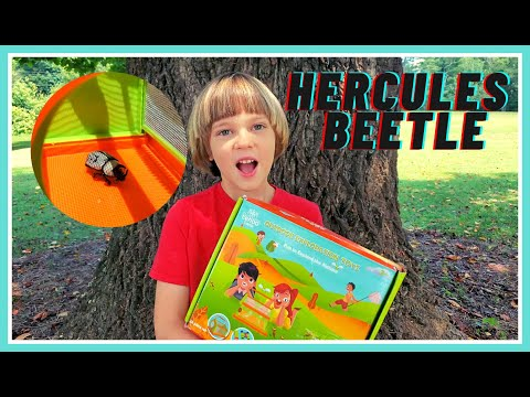 How I Found HERCULES BEETLE With Lehoo Castle Kids Explorer Kit Outdoor Adventure MALE And FEMALE 😱