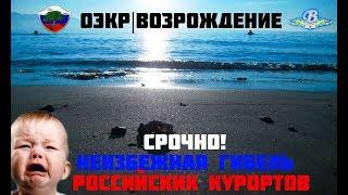 видео регистрация ООО в Сочи