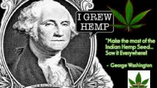 Cannabis Truth - Evolution of THC The Holy Cannabinoid - Miracle Marijuana.
